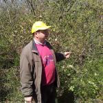 Giuseppe ci guida tra le prime macchie del bosco di Sciuscio